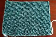 Sample in garter stitch